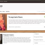 BookRev Lite — интернет магазин книг с поддержкой WooCommerce