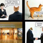 Мемы в работе брендов: как и для чего